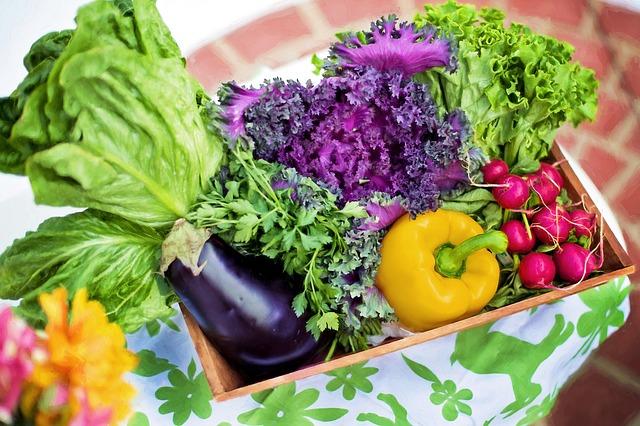 košík zeleniny.jpg